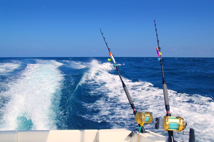 Deep Sea Sport Fishing